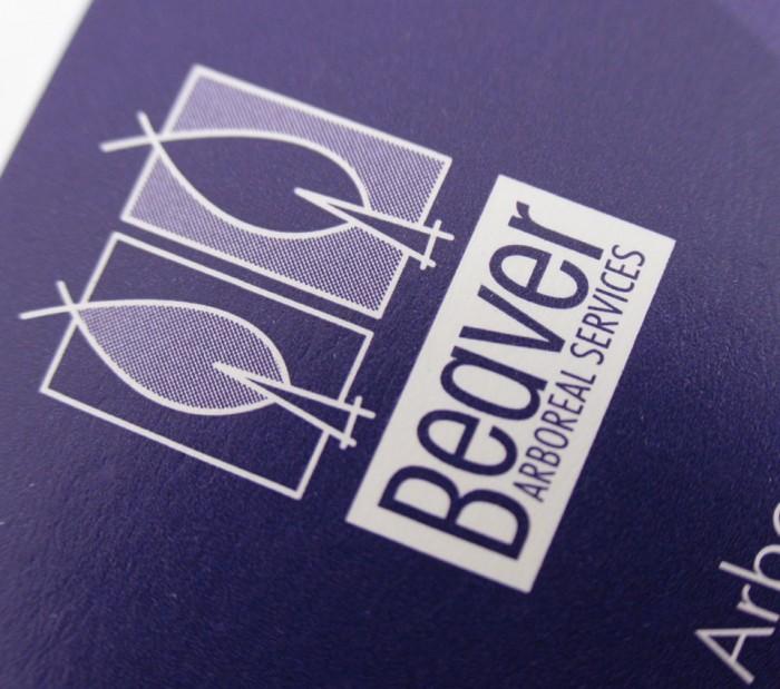 Logo Design for Beaver, reversed