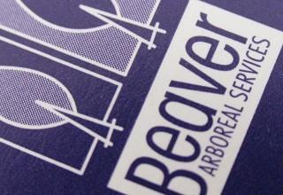 Logo Design, Beaver Arboreal