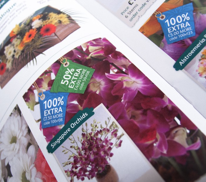 Valueflora Catalogue Design