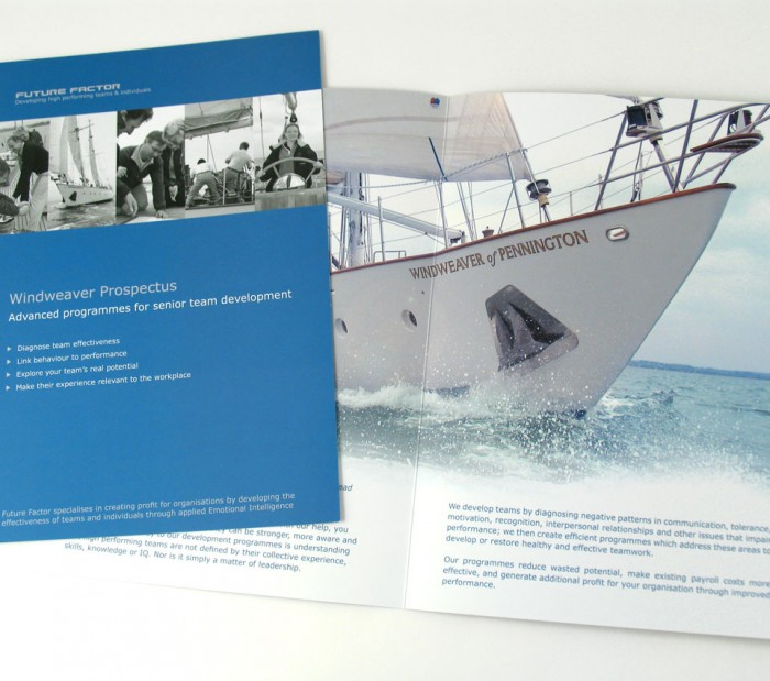 Future Factor Brochure