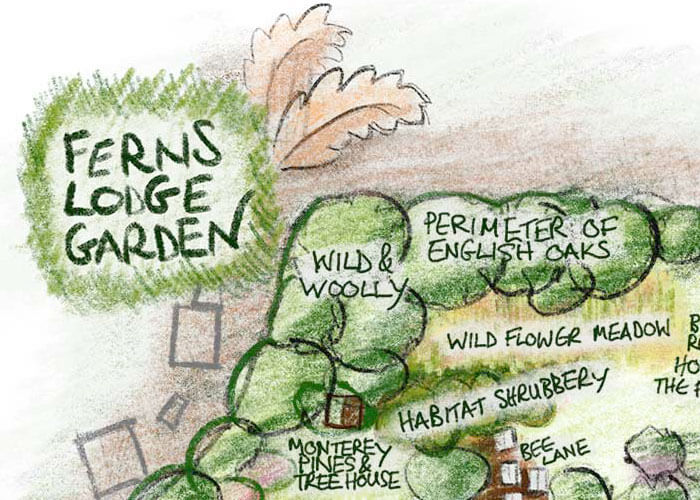 Ferns Lodge NCS Garden Map Illustration